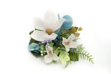 Spinka butonierka magnoliowa Ptaszarnia