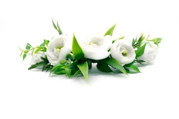 Grzebyk w bieli i zieleni Ptaszarnia
